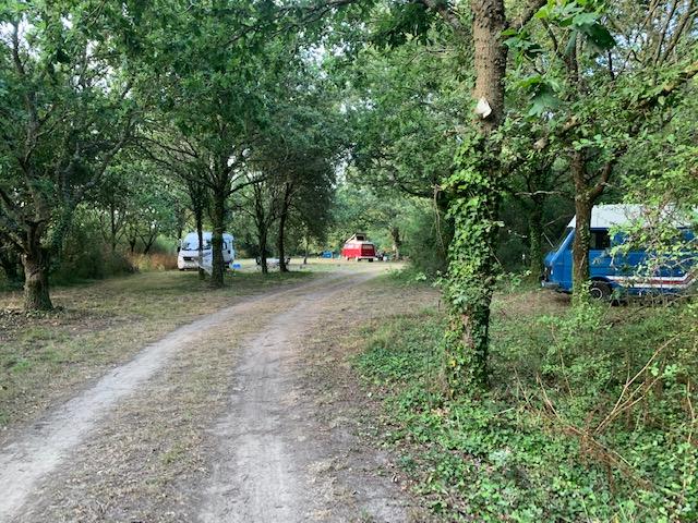 Aire camping-car à Piriac-sur-Mer (44420) - Photo 1